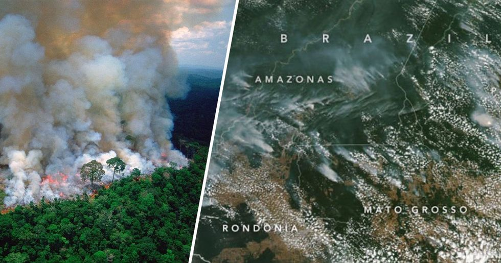 The Amazon Forest Has Been Burning for Over a Week and You Can See the Fire From Space