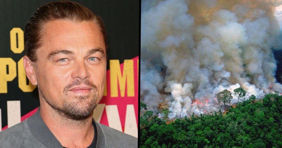 Brazil's President Accuses Leonardo DiCaprio of Funding Amazon Fires