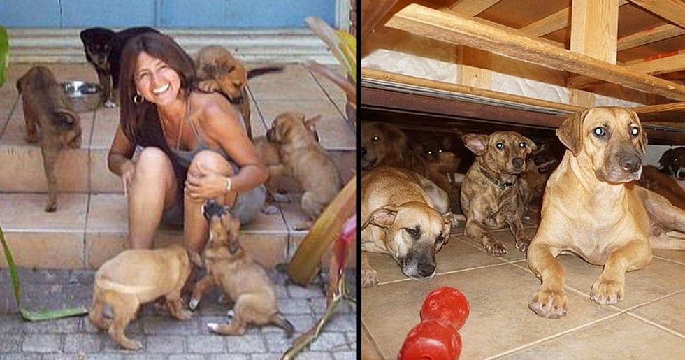 Bahamas Resident Shelters 97 Dogs in Her Home During Hurricane Dorian