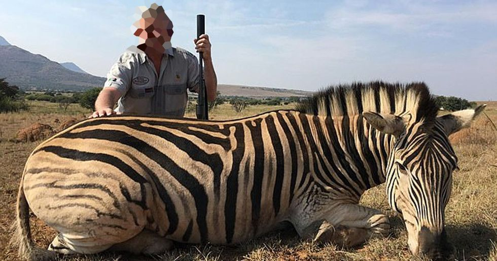 Trophy Hunters Kill Vulnerable Zebras and Post Smiling Pictures on Instagram