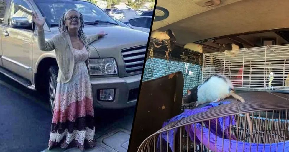 San Diego Woman Found Living in Van With 320 Pet Rats