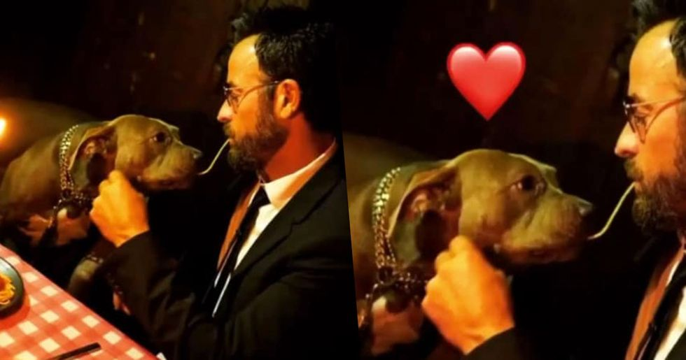 Justin Theroux Took His Dog As His Date To The 'Lady And The Tramp' Premiere