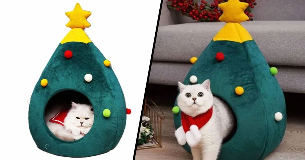 Amazon Is Selling Christmas Tree Beds for Cats and They're Adorable