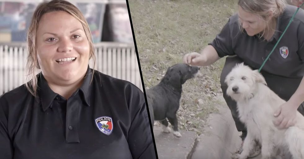 Woman Brings Animal Shelter's Kill Rate from 100% to 0%