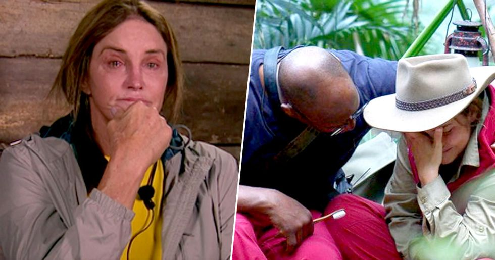 I'm a Celebrity on Lockdown as Vicious Killer on Loose near Camp