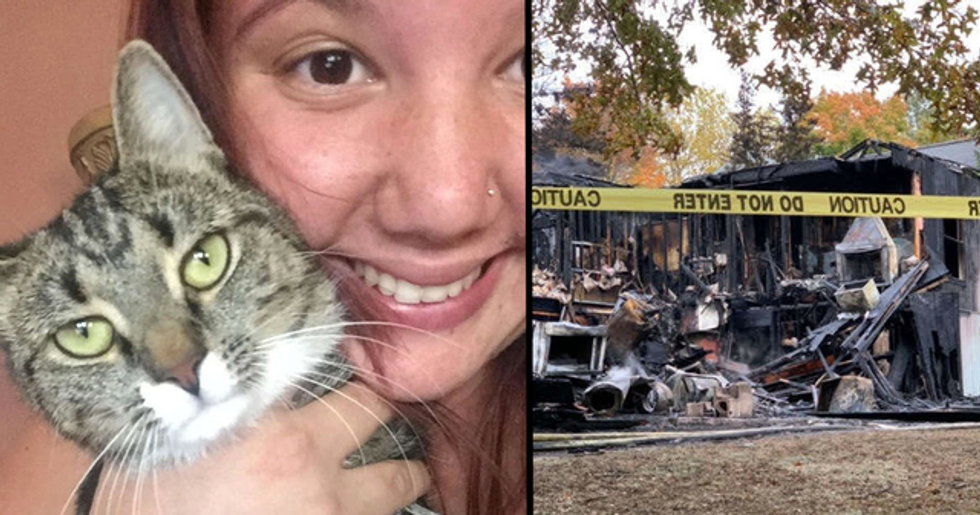 Rescue Cat Helps Save Owner And Neighbors From Fire