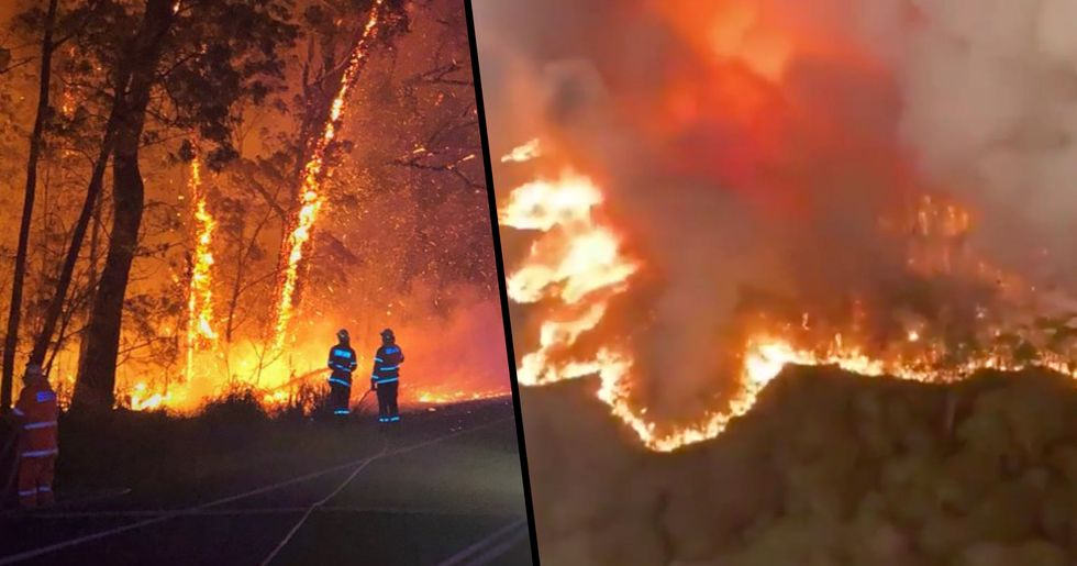 Canadian Firefighters Volunteer to Give up Christmas With Their Families to Help Fight Australian Bushfires