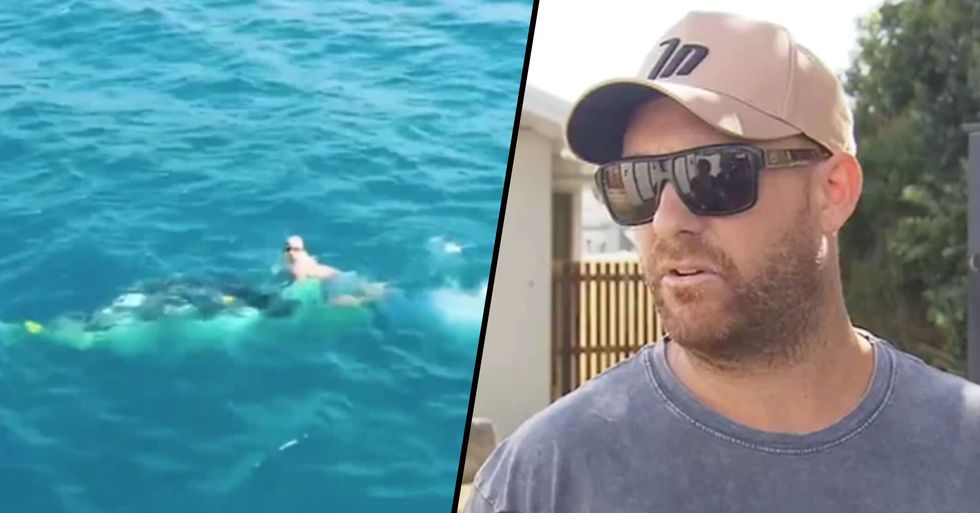 'Hero' Diver Who Freed Whale Trapped in Shark Nets off Gold Coast Facing Huge Fine