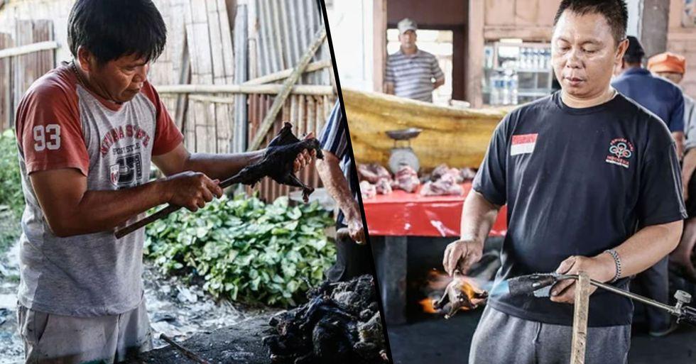 Wuhan Bans Eating Wild Animals