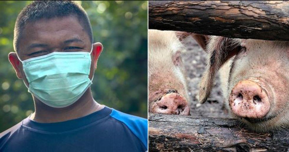 China Risking New Global Pandemic Even Worse Than Coronavirus, Expert Warns