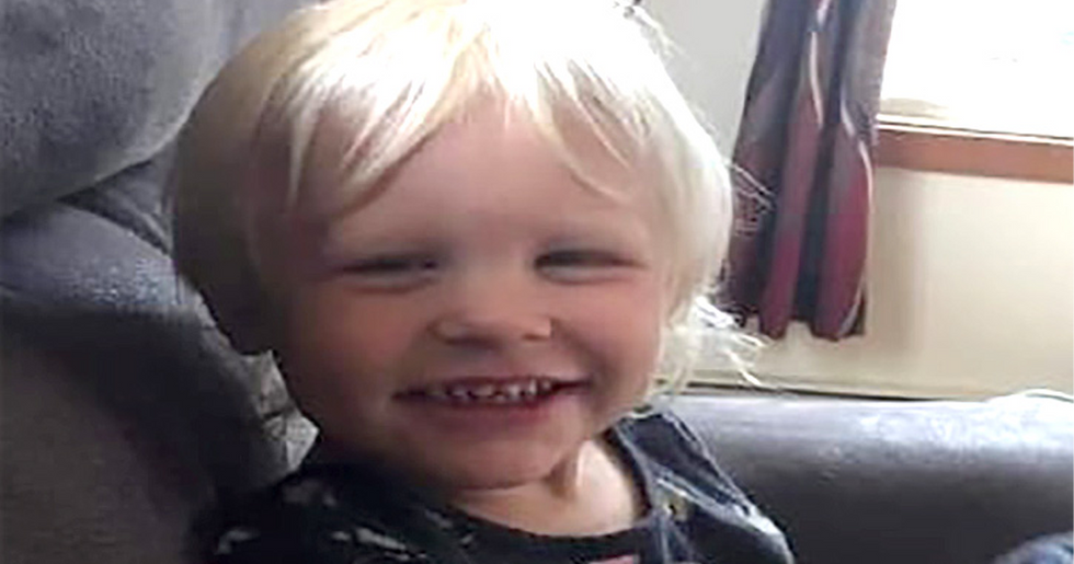 Missing Toddler Found Alive and Well With Cocker Spaniel After Being Lost in Woods for 24 Hours