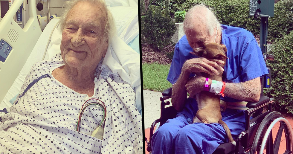 Navy Veteran Who Had a Stroke Is Reunited With Chihuahua That Saved His Life