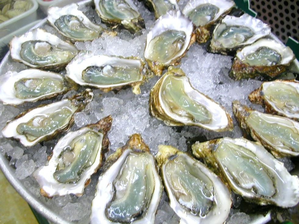 March of the Mollusks: Bar Crawling for Oysters in NYC