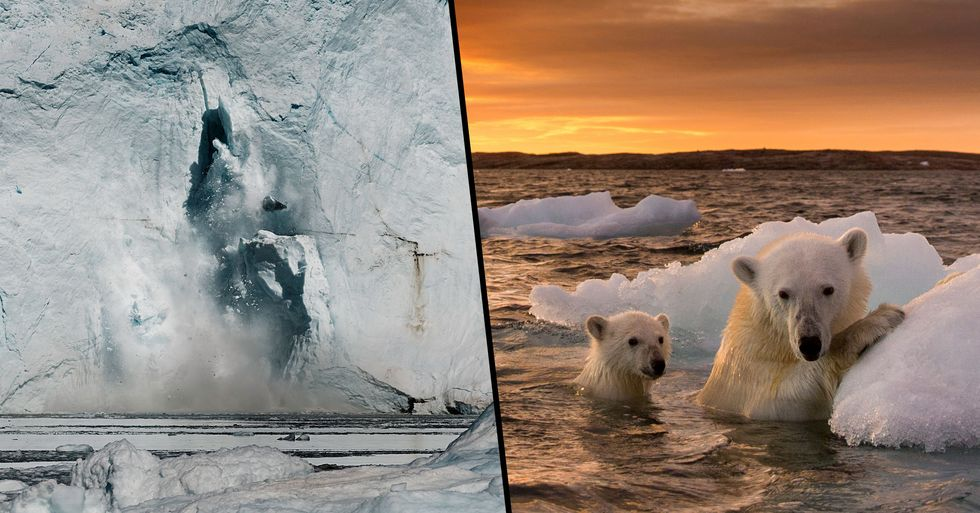 Earth Has Lost 28 Trillion Tonnes of Ice In Less Than 30 Years