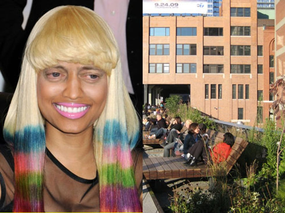 Eight Items or Less: She's Got Steve Buscemi Eyes + Nine Reasons Why the High Line Sucks (?!)