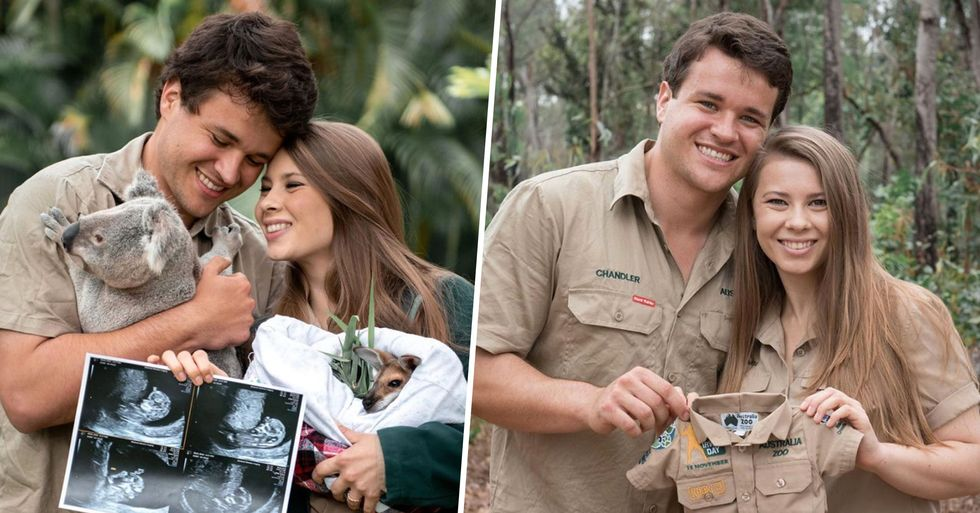 Bindi Irwin Gushes Over 'Magical' Pregnancy While Showing off Sonogram