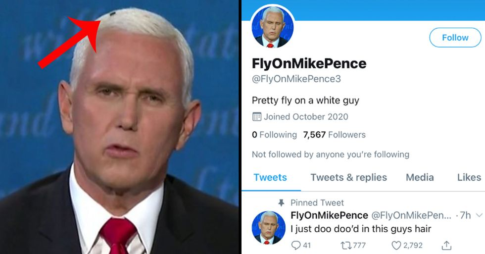 The Fly on Mike Pence's Head Has a Twitter Account