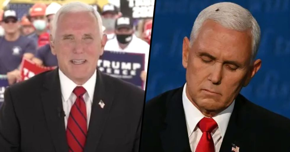 Mike Pence Finally Addresses Fly on His Head During VP Debate