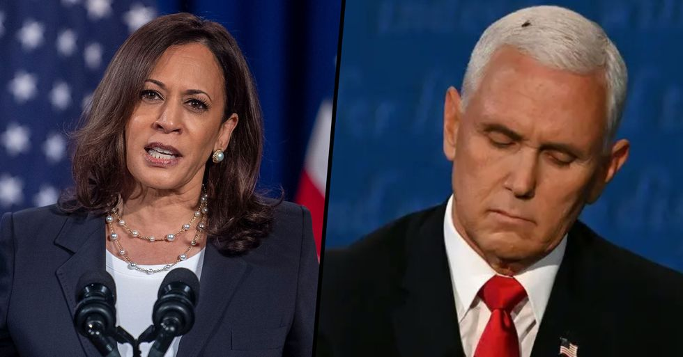 Kamala Harris Has Hilarious Reaction To the Fly on Mike Pence's Head