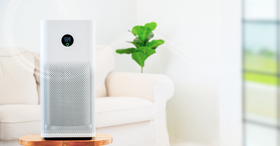How to Purify the Air in Your Home for a Healthy Indoor Environment (2020)
