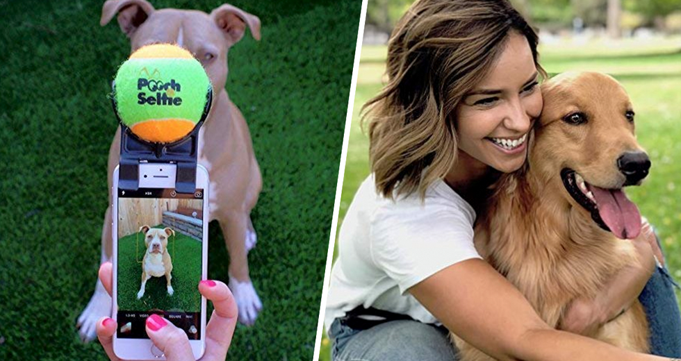 Pet Owners Are Talking Selfies with Their Dog Thanks to This Invention