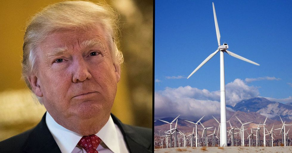 Donald Trump Thinks Noise from Wind Turbines 'Causes Cancer'