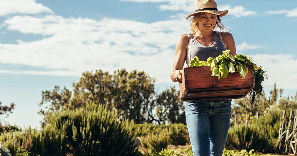 Gardening Is Not as Beneficial for Your Body as Going to the Gym