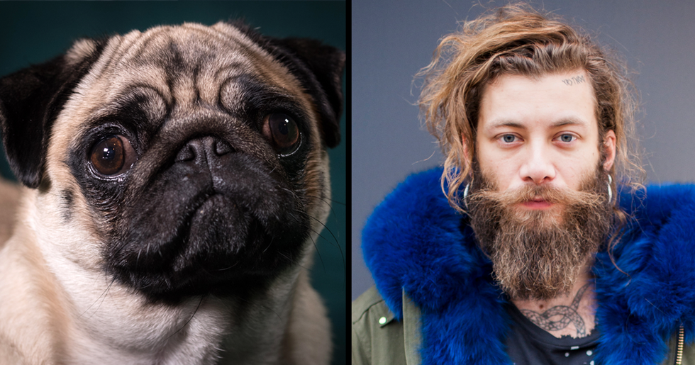 Men With Beards Carry More Germs and Bacteria Than Dogs, Study Says