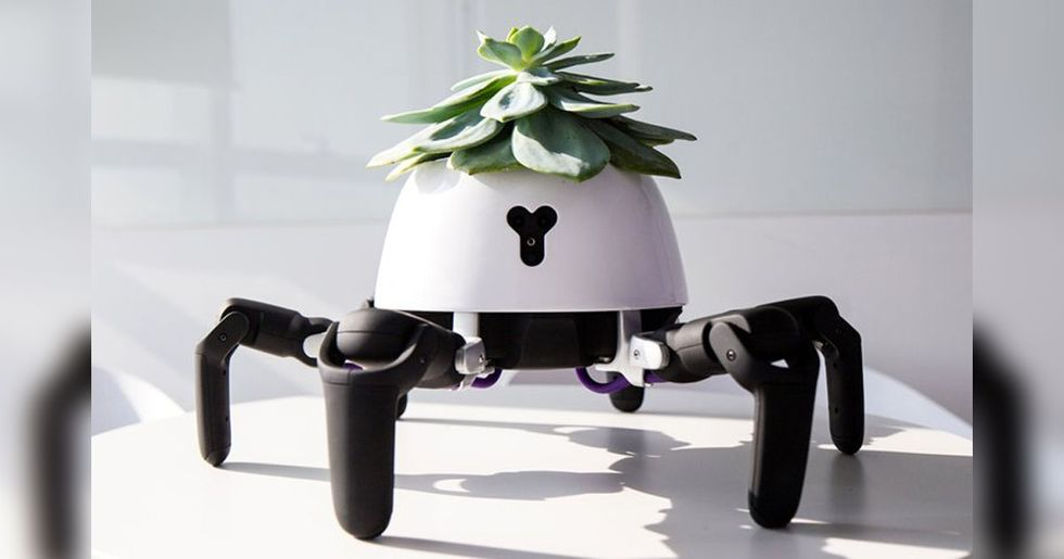 This Robot Will Chase the Sun to Get Your Plant the Light It Needs