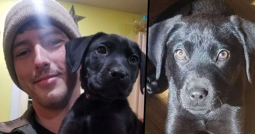 Deaf Man Adopts Puppy and Teaches Him Sign Language