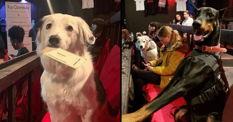 Movie Theater in Texas Has Bottomless Wine and Let's You Bring Your Dog