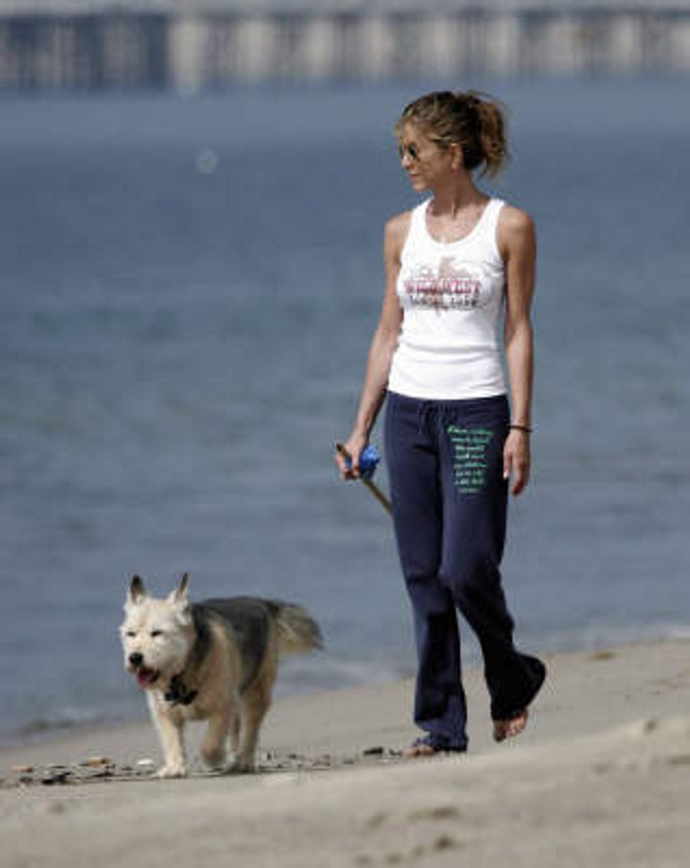 Today in Celebrity Dog News: RIP Tom Hanks' Dog Monty + Uggie Nabs Golden Collar Award
