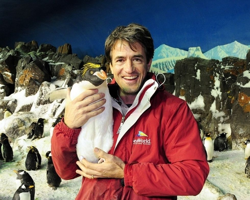 The Morning Funnies: Dermot Mulroney With a Penguin + The Daddle