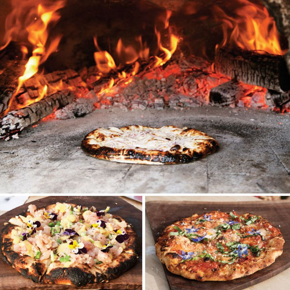 The Food Networks: The Pizza Project