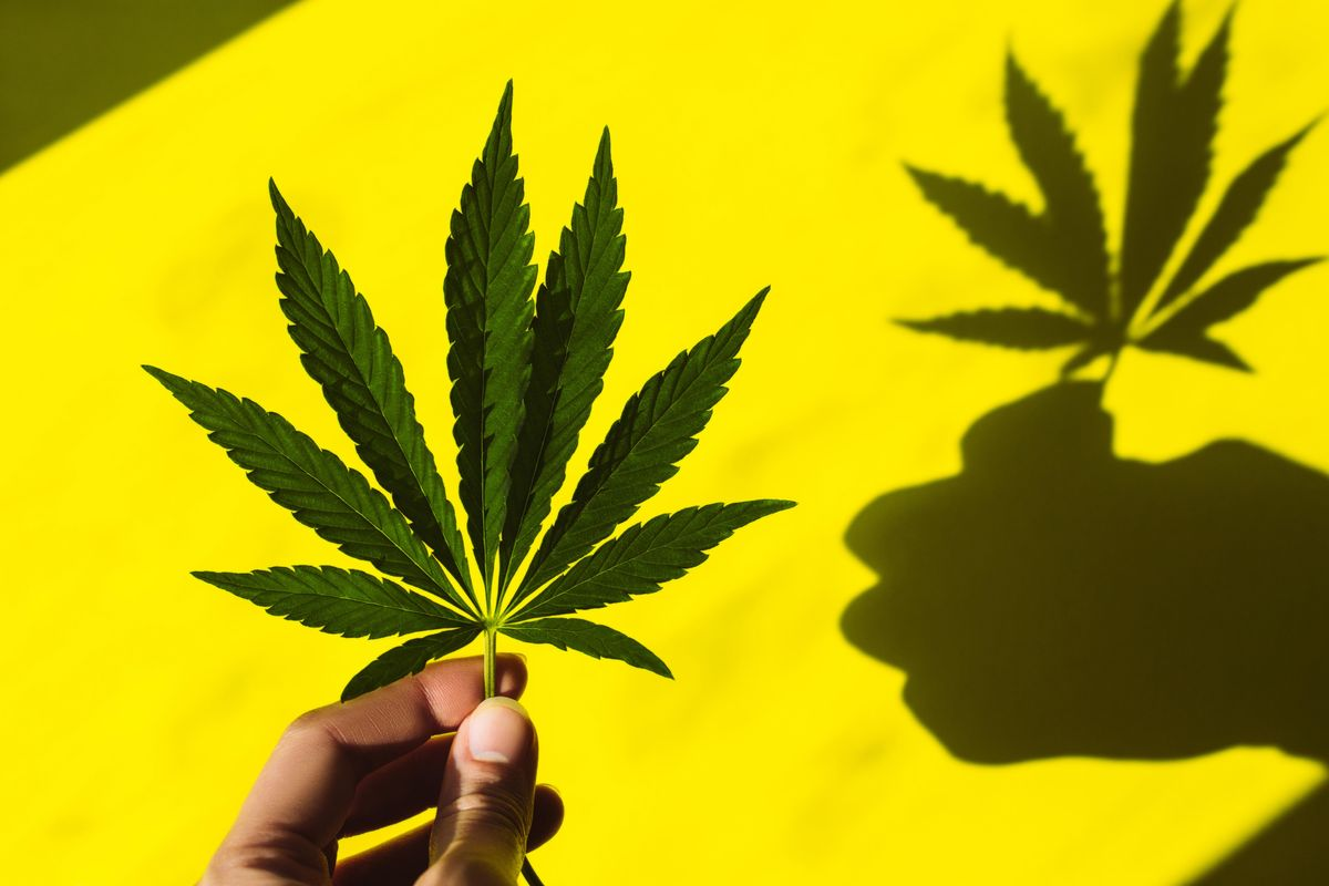 New York Is Closer to Legal Weed Than You Think