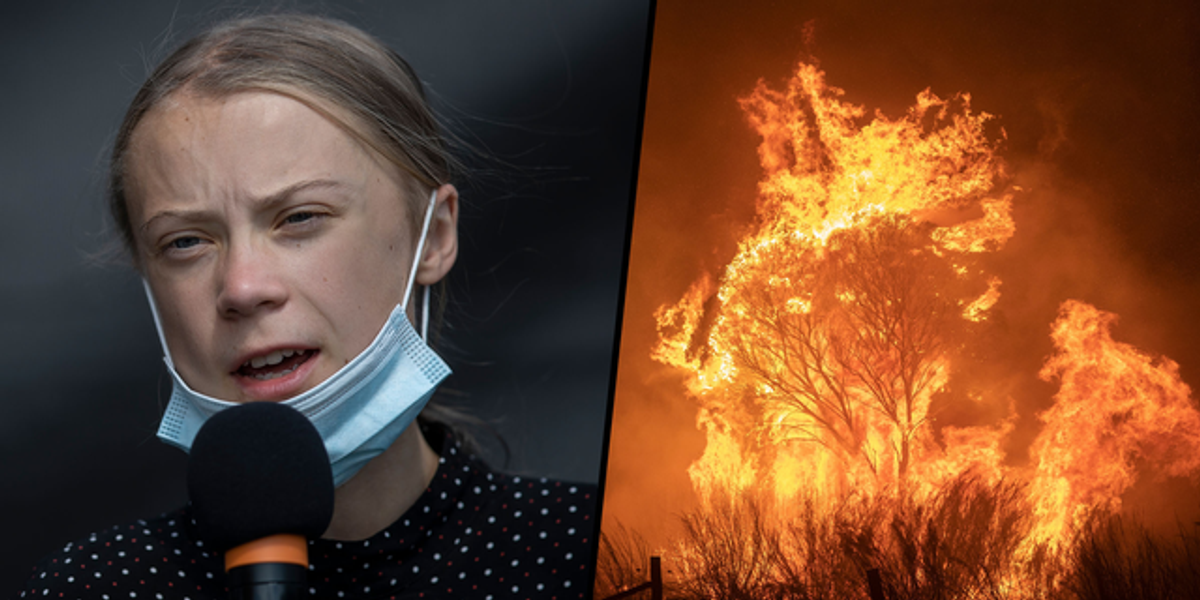 Greta Thunberg Delivers Grave Warning To the World After NASA Declare 2020 Hottest Year on Record