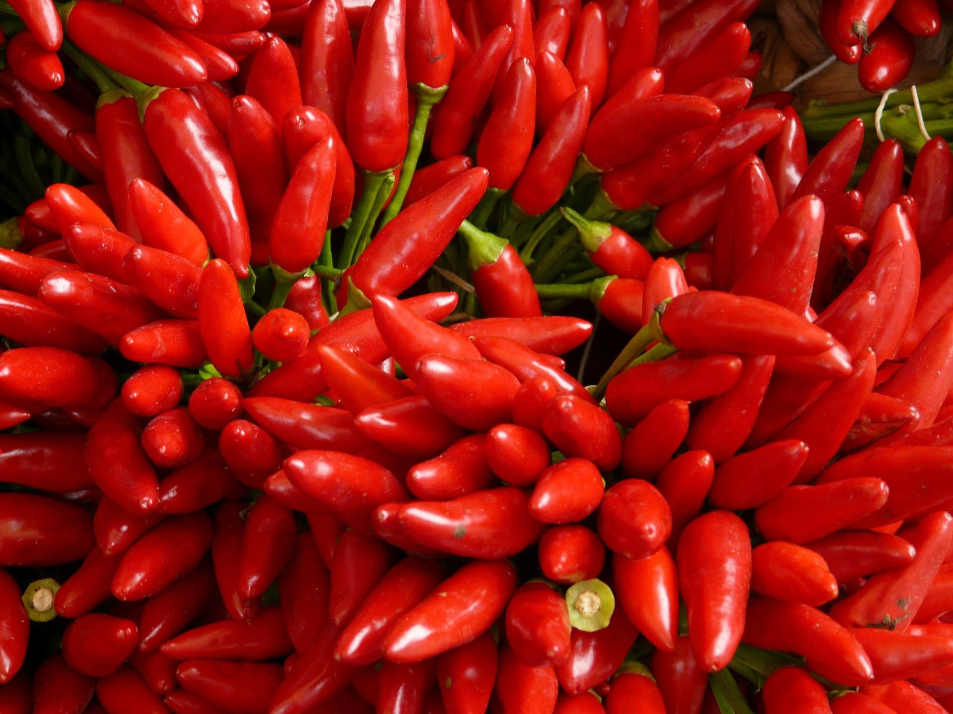 bigthink.com - Stephen Johnson - Capsaicin, the chemical in spicy peppers, used to boost solar cell performance