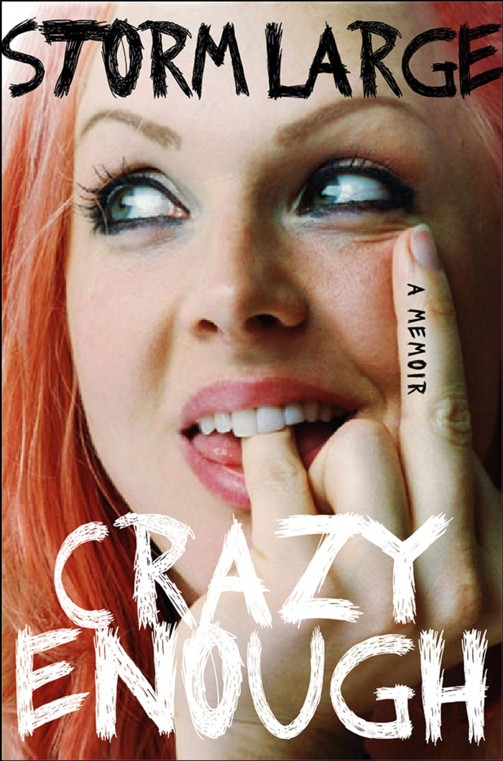 Singer Storm Large Makes Going to the Dark Place Fun in Her Memoir Crazy Enough