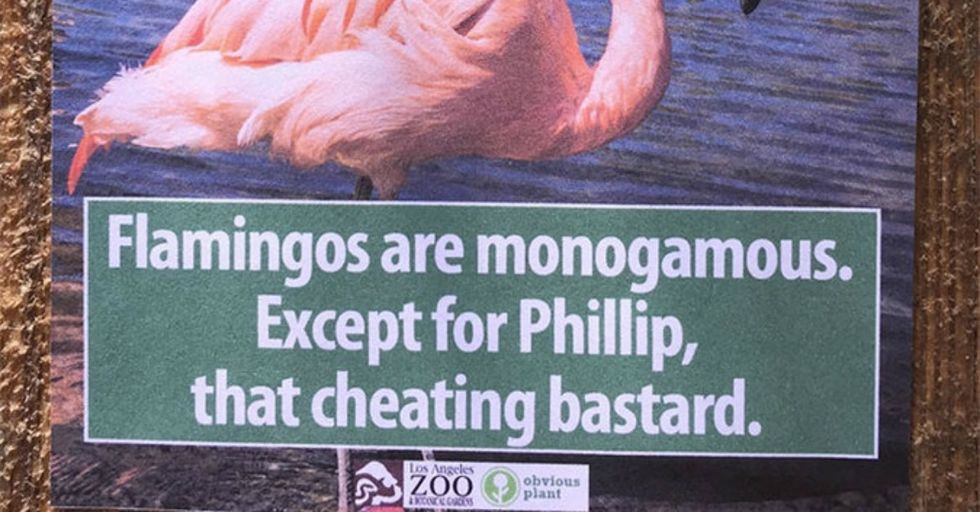 These Hilarious Signs Made the Los Angeles Zoo a MUCH More Interesting Place