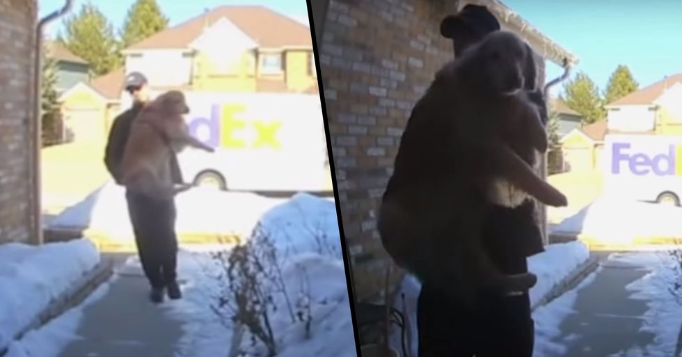 FedEx Driver Brings Family's Lost Dog Home After She Escapes