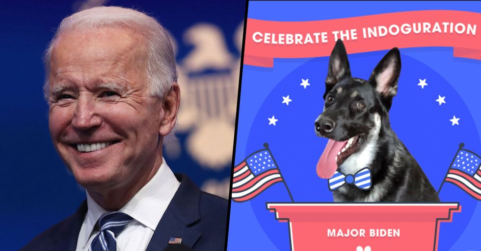 Joe Biden's Dog Major Will get an 'Indoguration' as The White House's First Rescue Dog