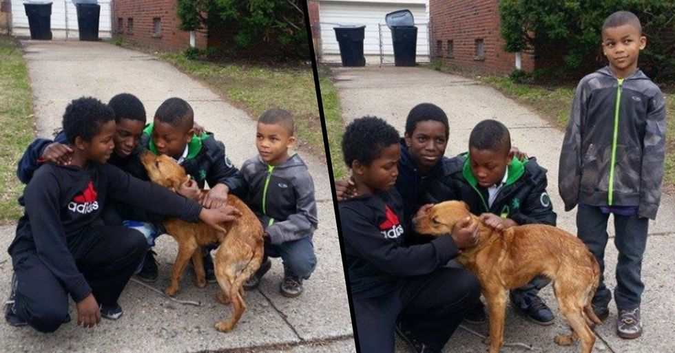 4 Young Boys Rescue Starving, Abandoned Dog Tied to House With Bungee Cords