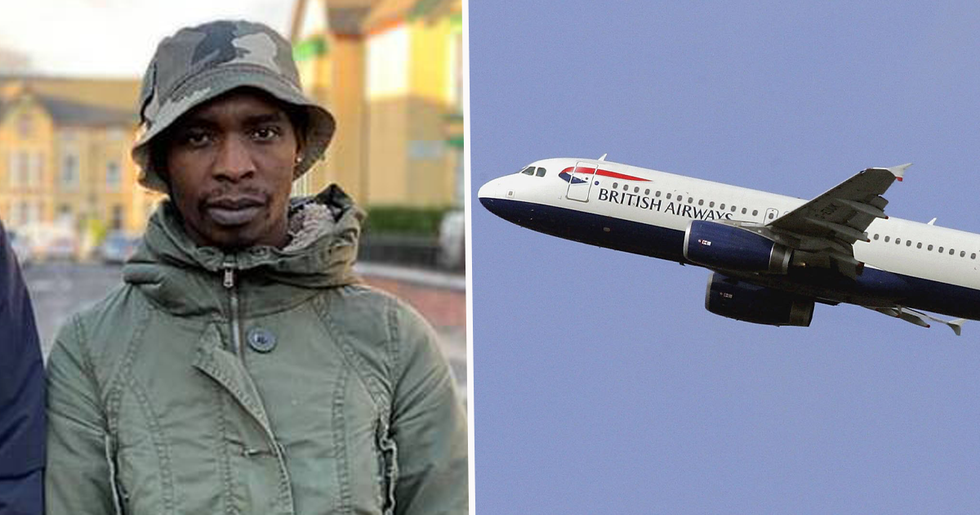 Stowaway Survived 5,600 Mile Flight Clinging to The Bottom of Jet