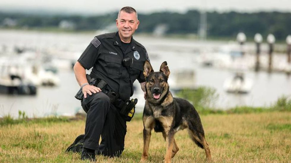 Police Officer Forced to Fatally Shoot Police Dog at Crime Scene