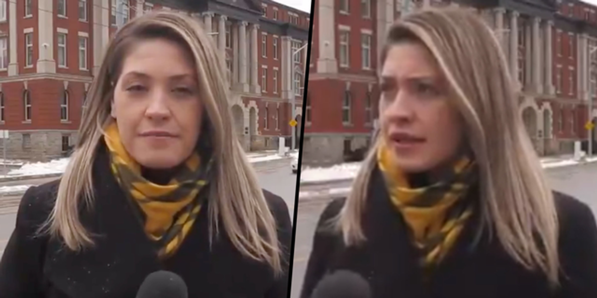 Reporter Responds Perfectly to Guy Yelling Obscenity at Her on Live TV