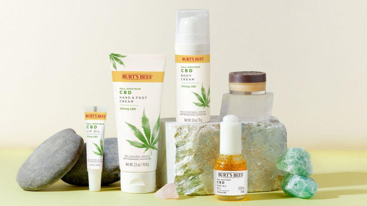Favorite Brand Burt's Bees Launches New CBD Line: Our Take