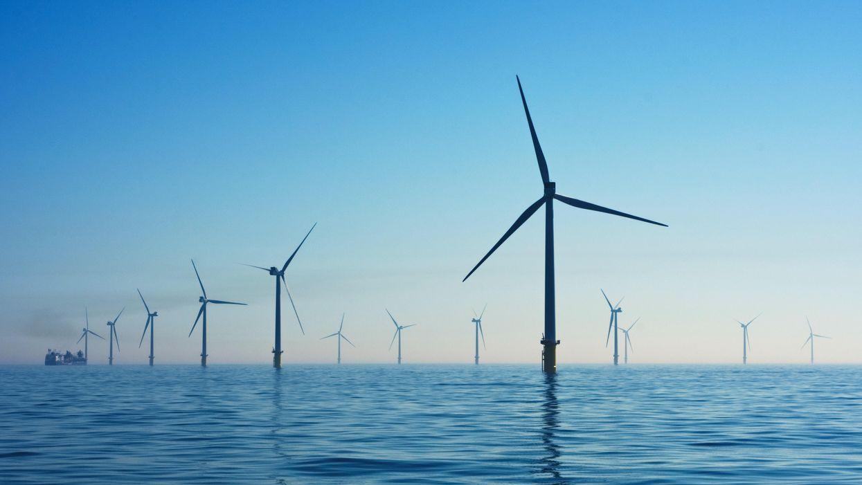 Investors see green returns as renewable energy rises
