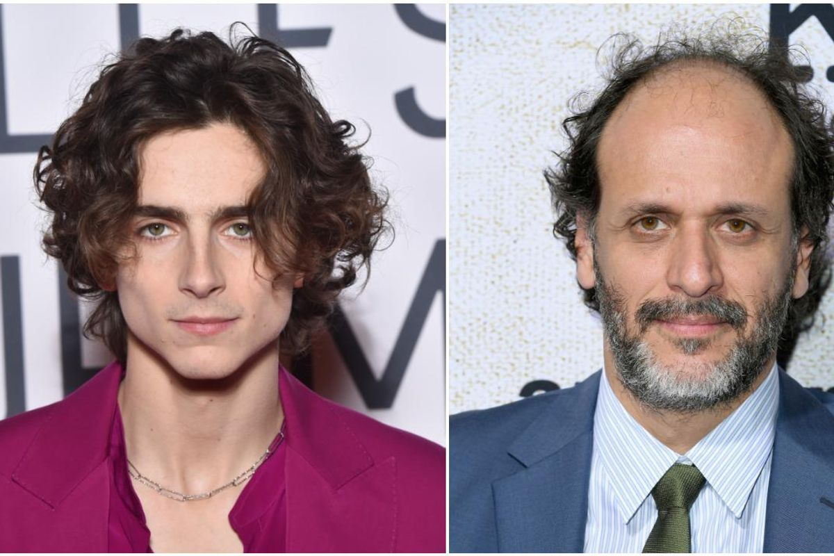 Timothée Chalamet, Luca Guadagnino May Be Making a Cannibal Movie