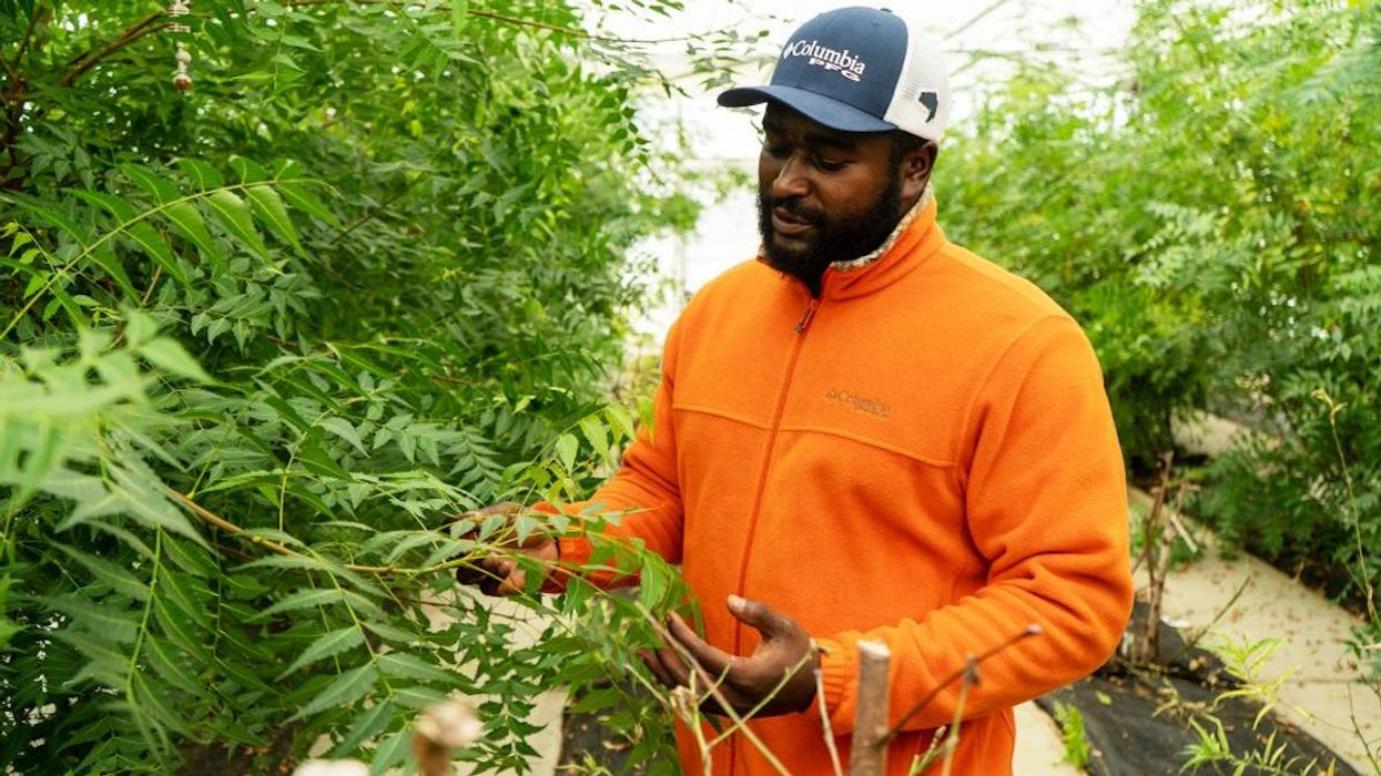 Black-Owned Farms in New Focus as Biden Looks for Solutions to Both Race and Climate Crises