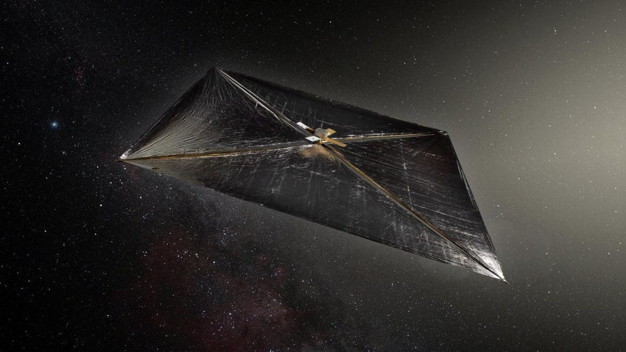 Was 'Oumuamua a rock or an alien scout? Harvard astronomer talks controversial hypothesis in new book
